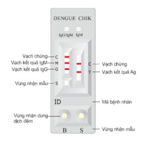 Test sốt xuất huyết Dengue Duo - CTK