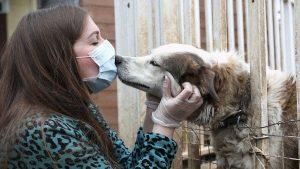 triệu chứng khả năng nhiễm Covid qua tiếp xúc với vật nuôi