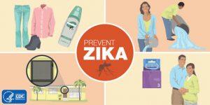 virus zika gây bệnh đầu nhỏ - các biện pháp phòng tránh